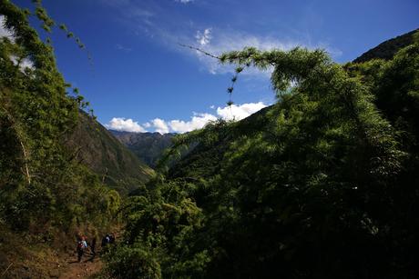 DEWA plans expedition to deepest, darkest Peru