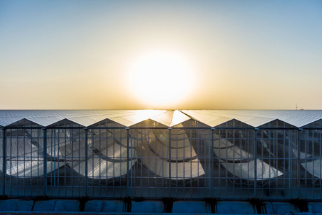 Phase 1 of Oman's solar-to-oil Miraah project complete