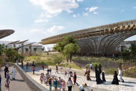 Construction tender floated for Expo 2020 Dubai's Dutch pavilion