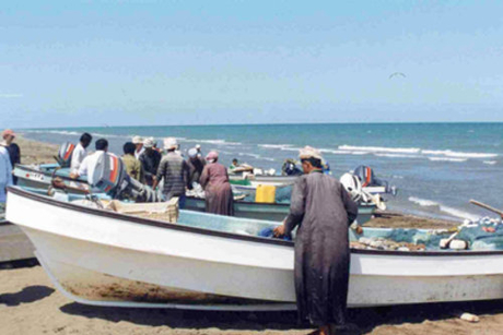 Fisheries plans to support Oman construction