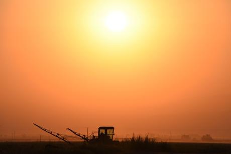 Egypt's Orascom completes US fertiliser plant