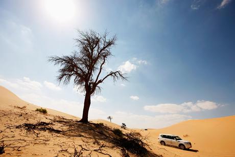 Shurooq starts work on $12m desert camp project