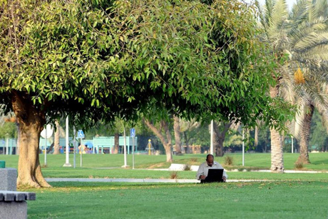 Doha: More 'smart' public parks to have free Wi-Fi