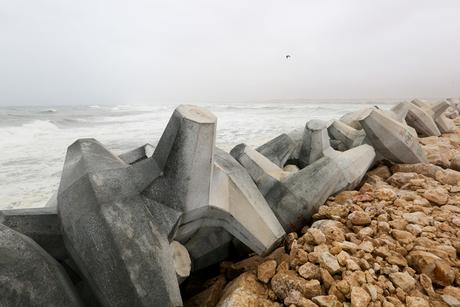 Site visit: Taqah Fishery Harbour, Taqah, Oman