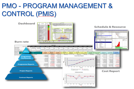 Revealed: WSP PB's Project Management Info System