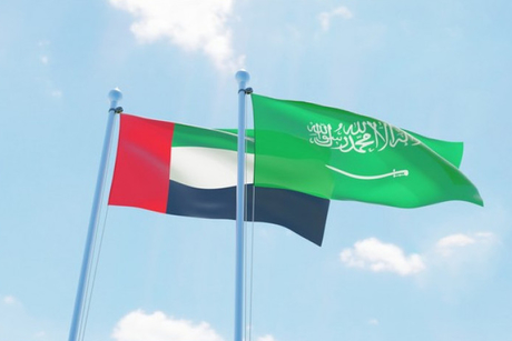 Saudi Arabia, UAE unite for home construction standards, projects