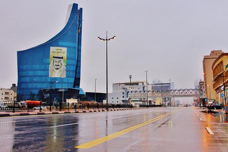 Survey finds growing demand for public transport in Saudi Arabia
