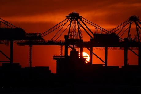 Abu Dhabi-based industrial facilities grow 57% YoY to 66 in 2019