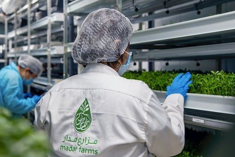 Madar Farms to construct first-of-its-kind indoor facility in KIZAD