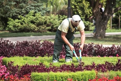 "Burj Mushraf CEO: Team ""worked hard"" for Tubli garden project"