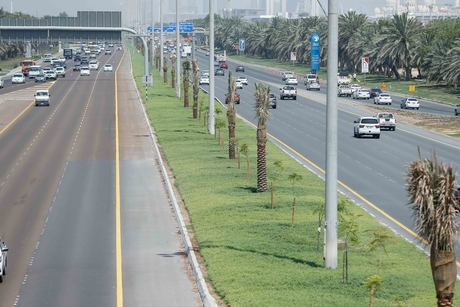 ADM carries out beautification on 31,800m2 of Arabian Gulf Street