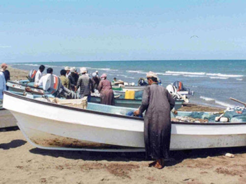 Oman's agriculture and fisheries sector is expected to drive investments towards construction as well [representational image].