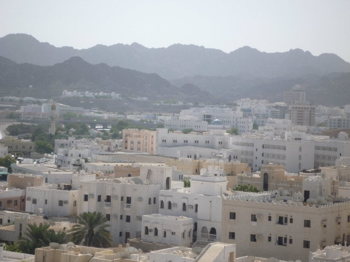 Muscat recorded the highest number of sale contracts.