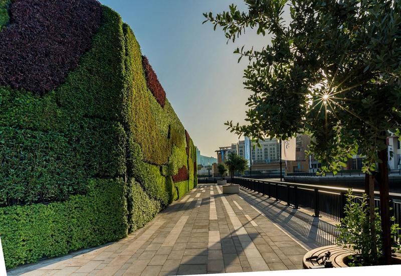 Living green wall at Dubai Wharf.