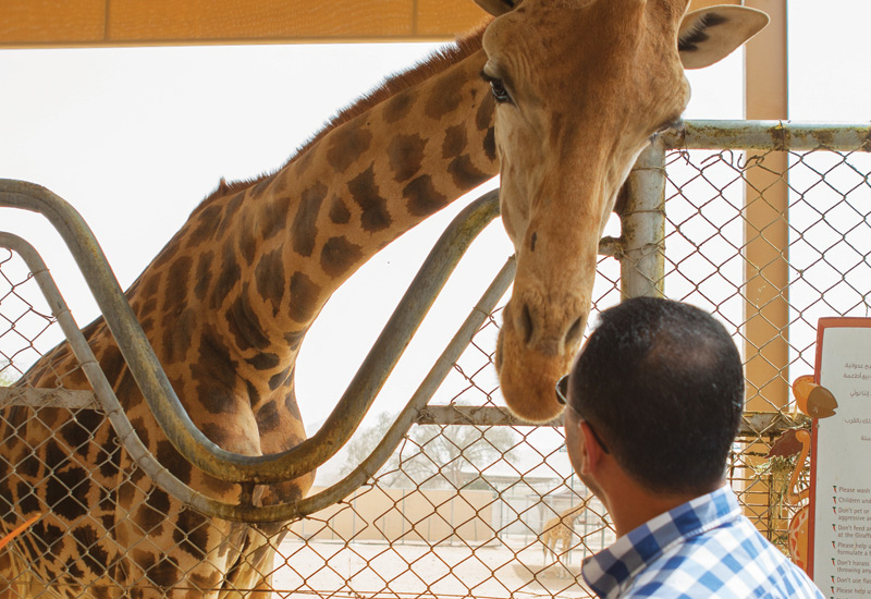 Al Ain Zoo is being extended to include new safari-style zones.