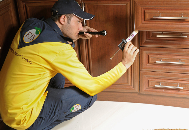 Targeting the pests, and them alone: Pest control operators need to be licensed to do their jobs in the UAE.