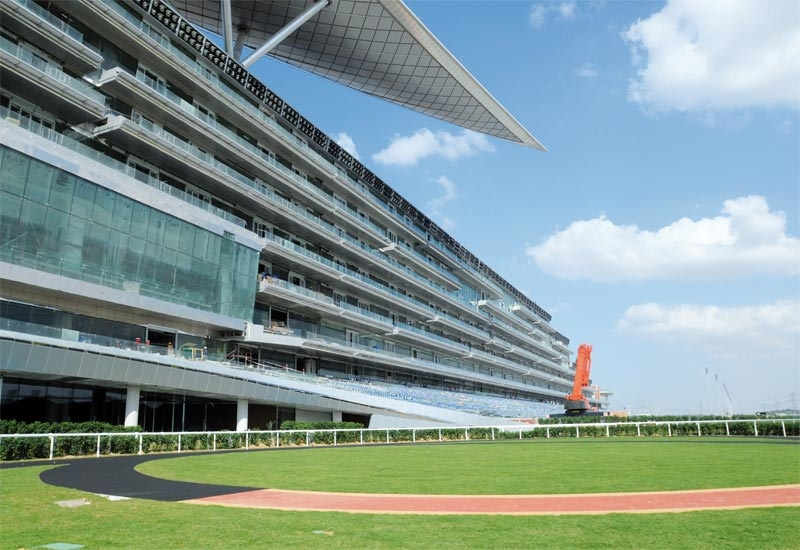 The Meydan racecourse in Dubai is the largest in the world.