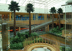 Plants and products: interior landscaping is becoming more and more important, as projects and developments start to appreciate the impact a green env