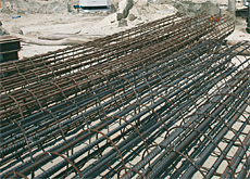 Brain drain: brokers and banks are trying to poach steel experts in preparation for the imminent launch of the futures rebar contract.