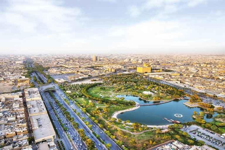 "Saudi's ""White Land"" programme reveals development of 225 plots [representative image]"
