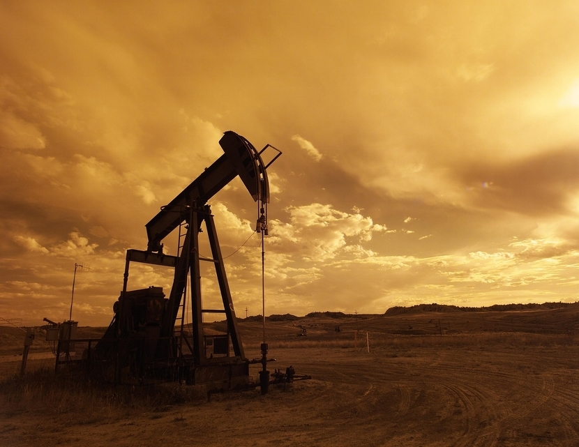 Dubai has formed a petroleum committee [representational].
