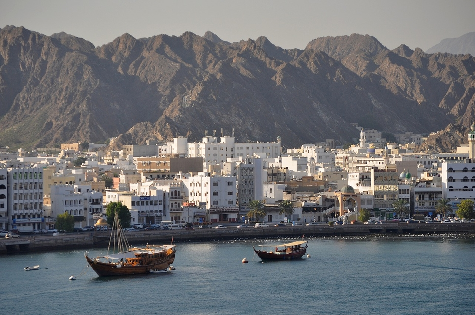 Oman's NCSI has revealed plot allotment figures.