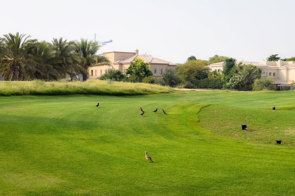 Arabian Ranches Golf Club course.