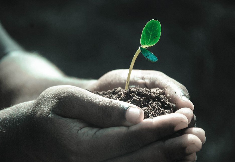 The significance of CSR is growing in the GCC.