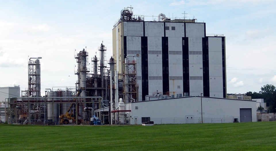 The plant will produe more than 1.2 million tonnes of wood pulp each year. [representational]