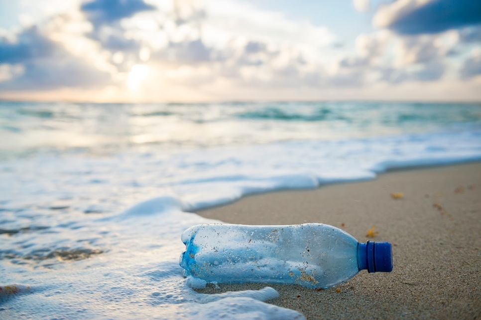 The negative effects of single-use plastic on the environment is huge.