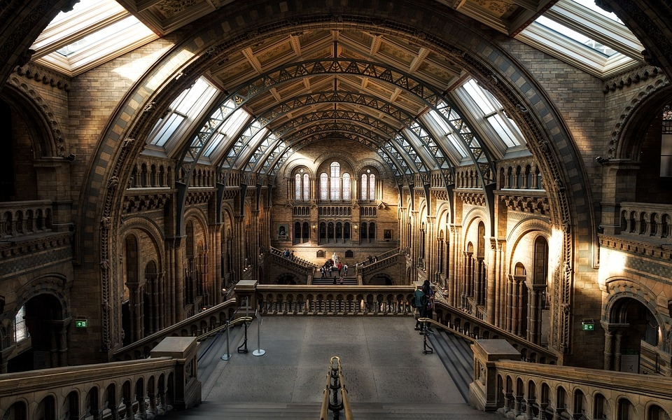 Each of the museum has eight halls. [representational]