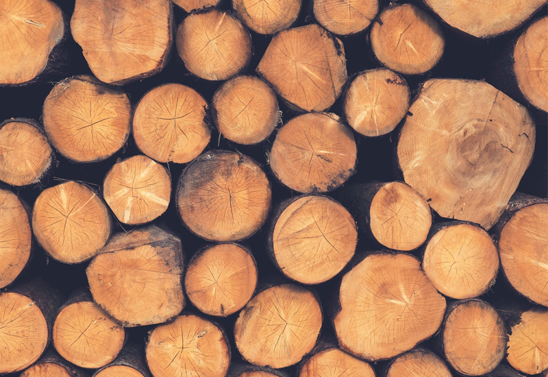 Timber is one of many benefits in boosting the construction industry, according to Emily Folks