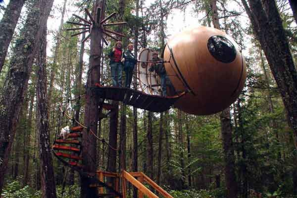 In pictures: Top 6 strangest treehouses