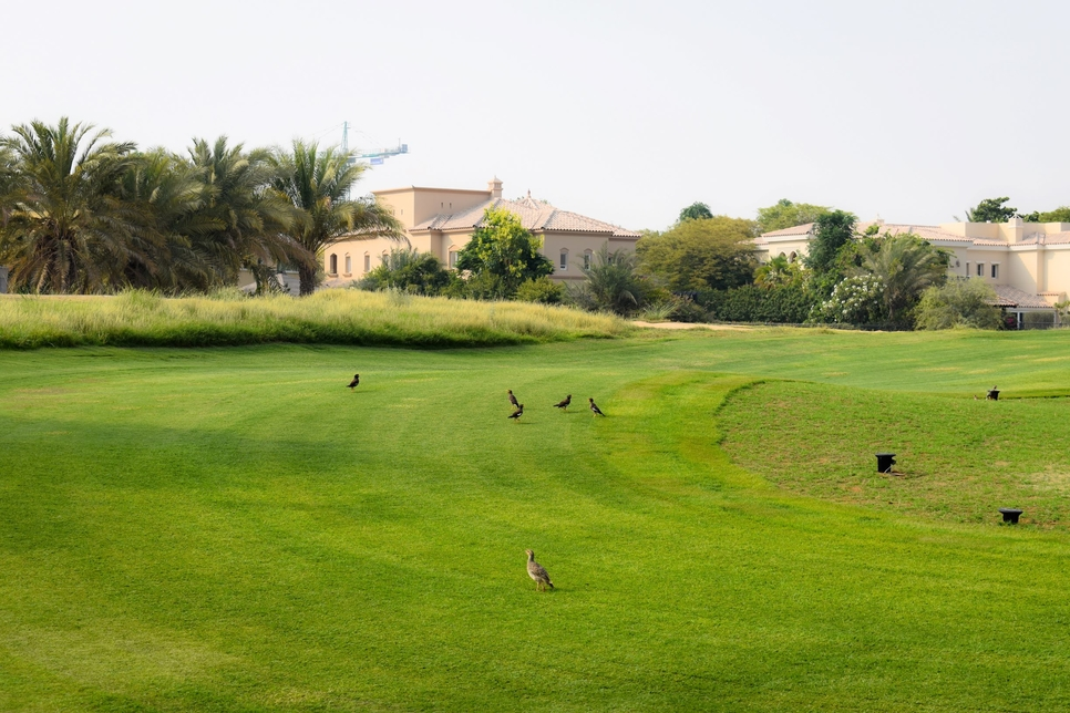 Desert Group firm revamps 18-hole Arabian Ranches Golf Club course