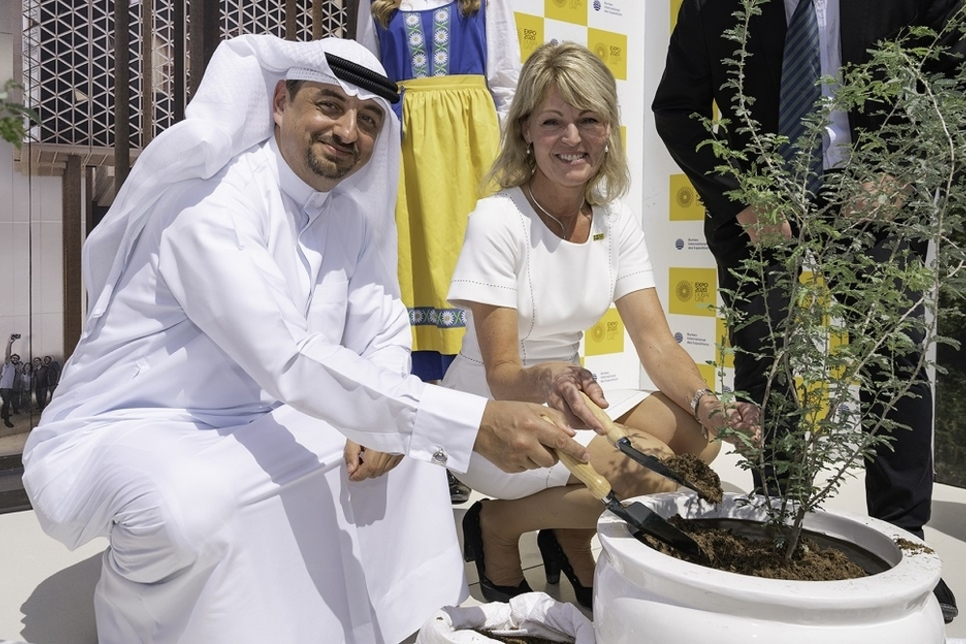 Swedish pavilion at Expo 2020 places focus on country's resources
