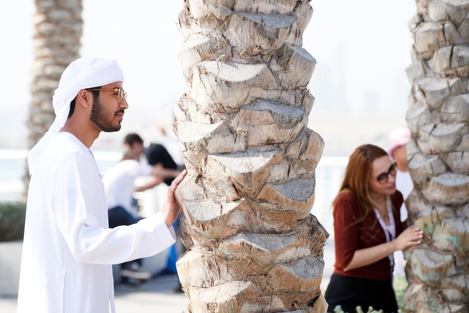 """Louvre Abu Dhabi installation makes """"palm trees sing together"""""""