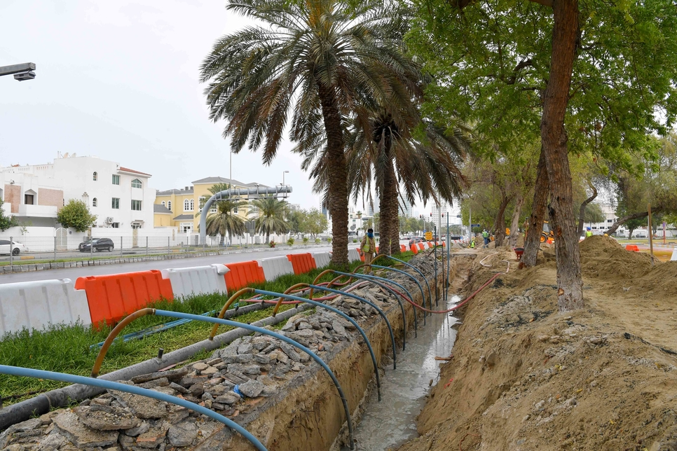 ADM begins $12.25m project focused on Abu Dhabi Island irrigation
